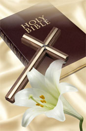 bible and lily